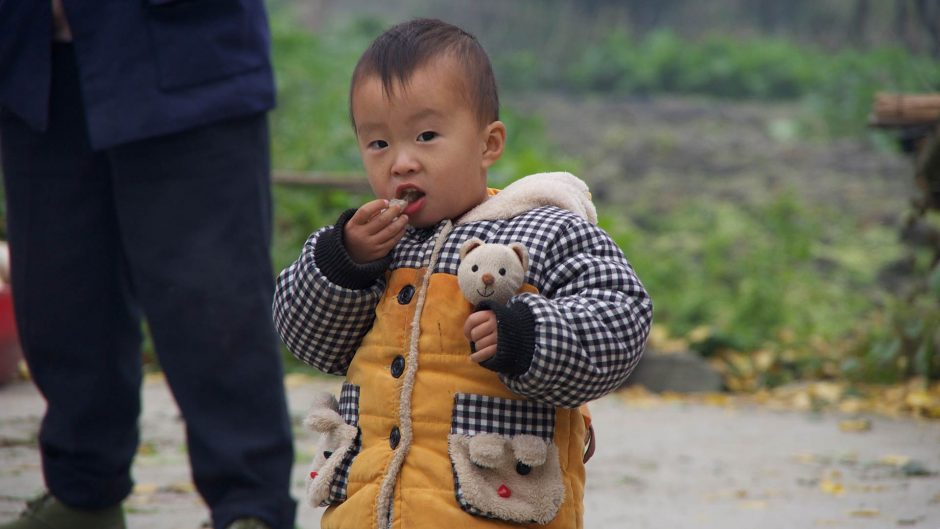 China's Generation Green